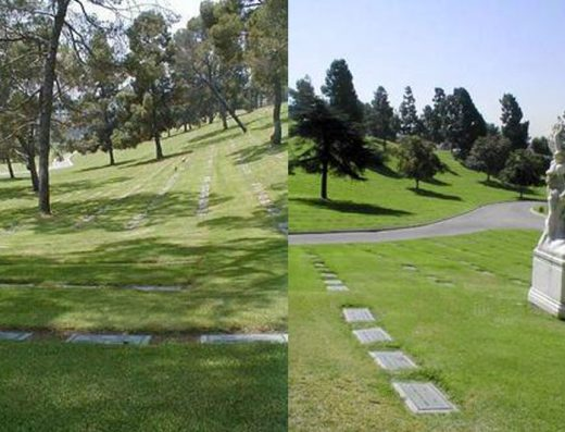 Home | Bayer Cemetery Brokers | Finding You The Best ...