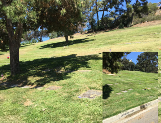Forest Lawn Glendale | Several Burial Plots To Choose From