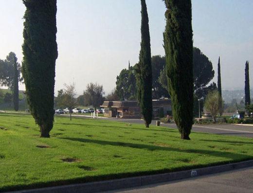 crestlawn m p riverside masonic garden lot 71 bayer cemetery